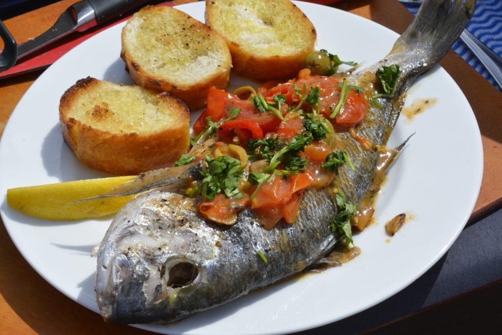 North_fish